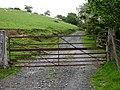 Gate and track, Bwlch-Coediog Uchaf - geograph.org.uk - 449349.jpg