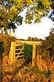 Gate on Footpath towards Baggrave Park - geograph.org.uk - 999961.jpg