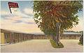 Gene's Motel -- W. of 85 & 87 on Alameda at 2840 Denver, Colo. (7725174404).jpg