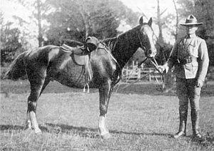 George Witton - Lieutenant G.R. Witton, Bushveldt Carbineers (1901).