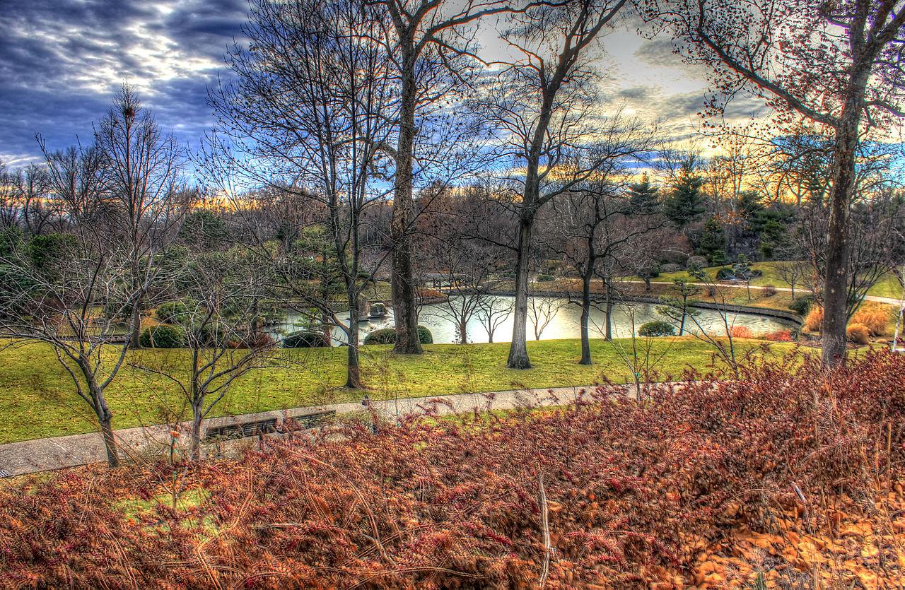 Datei Gfp St Louis Botanical Gardens Japanese Gardens Overlook Jpg