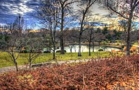 Gfp-st-louis-botanical-gardens-japanese-gardens-overlook.jpg