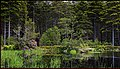 Glencoe Lochan, Glen Coe, Scotland. - panoramio.jpg
