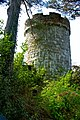 Glenveagh National Park - Castle Tower - geograph.org.uk - 1188715.jpg