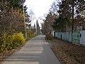 Gogol street in Ababurovo.jpg