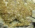 Gold-121123.jpg