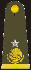 Gral brigadier