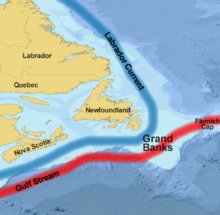 Grand Banks of Newfoundland (Banchi di Terranova), immagine di wikipedia