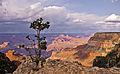 Grand Canyon 28.jpg