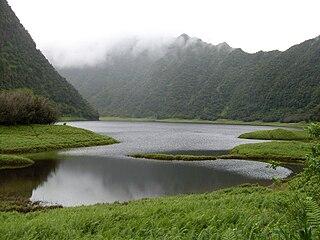 Rivière des Marsouins – Grand Étang Important Bird Area