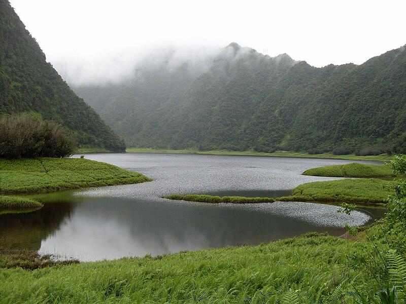 Quoi voir à l'île de la Réunion - le Grand Etang, Plaine des Palmistes
