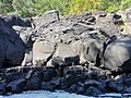 Grand river south east Mauritius 2019-09-29 6.jpg