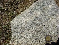 Granodiorite fine-grained.jpg