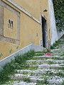 Grassy Steps (5972490626).jpg