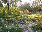 Graves of Soviet soldiers, Malamivka (2018-10-20) 06.jpg