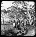 Group of women and children walking in the bush at Sandgate (3219070089).jpg