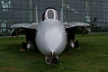 Grumman F-14D Super Tomcat 164343 HeadOn EASM 4Feb2010 (14404415359).jpg