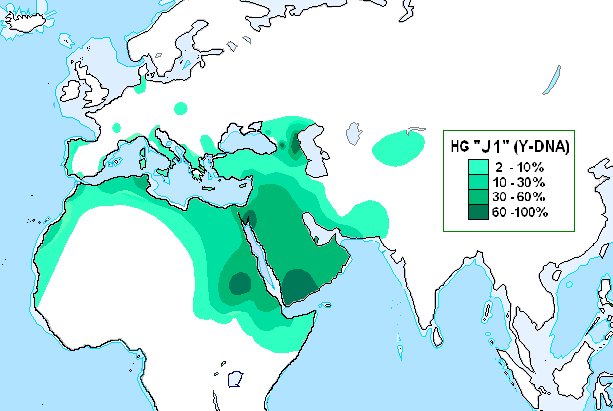 HG J1 (ADN-Y)
