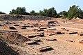 Harappa 3(asad aman).jpg