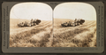 Harvesting in the great West, combined reaper and thresher, Washington, U.S.A, from Robert N. Dennis collection of stereoscopic views.png