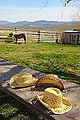 Hats At The Ranch (4614126246).jpg