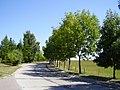 Hauptstraße in Nossendorf - panoramio (1).jpg