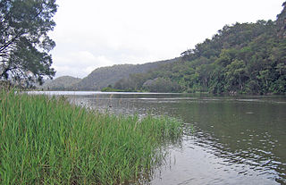 Dharug National Park Protected area in New South Wales, Australia