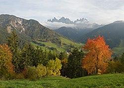 Herbstpanorama Sankt Magdalena Villnöß.jpg
