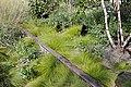 High Line (4980388687).jpg
