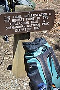 Highest point on the AT in Shenandoah National Park - panoramio.jpg