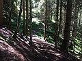 Hiking Trail near Chamonix, France - panoramio.jpg