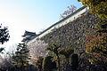 Himeji castle April 17.jpg