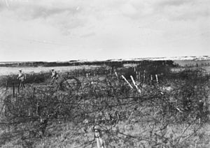 46th Battalion (Australia) - On 18/19 September 1918, men from the 46th Battalion penetrated the wire defences of the Hindenburg Line near Bellenglise.