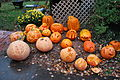 Holtorf Pumpkin Carving Association - Vienna VA (4062141971).jpg