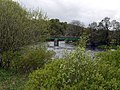 Holwick Head Bridge - geograph.org.uk - 1301809.jpg