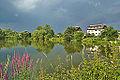 Horní rybník, Niva, okres Prostějov (04).jpg