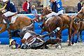 Horseball fall.jpg