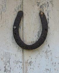 Horseshoe lucky on door.jpg