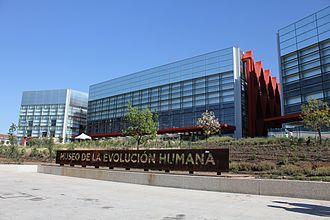 Museum of Human Evolution - Image: Human Evolution Museum