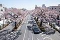 Ibaraki Prefectural Route-293 15.jpg