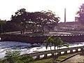 Ilha dos Amores - panoramio.jpg