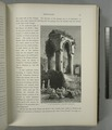 In the Mohammedan cemetery, Jerusalem (NYPL b10607452-80295).tiff
