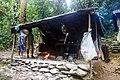 Indonesia - Bukit Lawang (25950077263).jpg