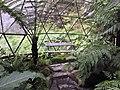 Inside geodesic dome, Attadale Gardens. - panoramio.jpg