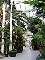 Internal, Palm House, Sefton Park (7).jpg