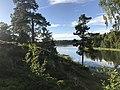 Island views.jpg