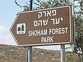 Israel National TrailDSCN4413.JPG