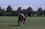 Jaeger-LeCoultre Polo Masters 2013 - 31082013 - Match Legacy vs Jaeger-LeCoultre Veytay for the third place 38.jpg