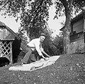 Janez Bartol meri platno, Bistrica 1961.jpg