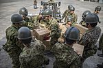 Japan Earthquake Relief 2016 160420-M-AO893-194.jpg